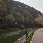 Chuncheon ⟷ Hanam Blossoms Path Rider Stream