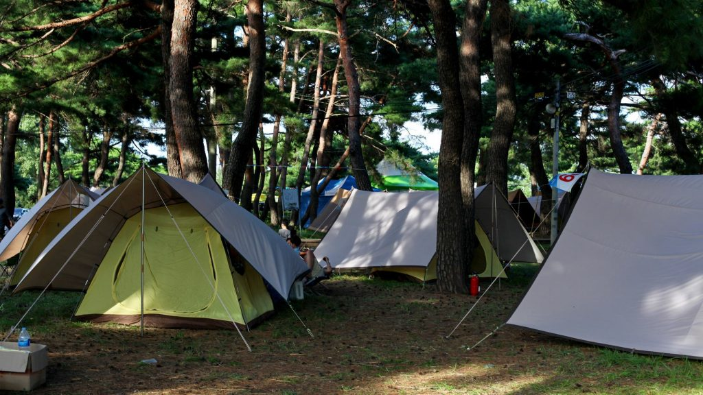 Camping tents on a private campsite along the East Coast Bike Route in South Korea.