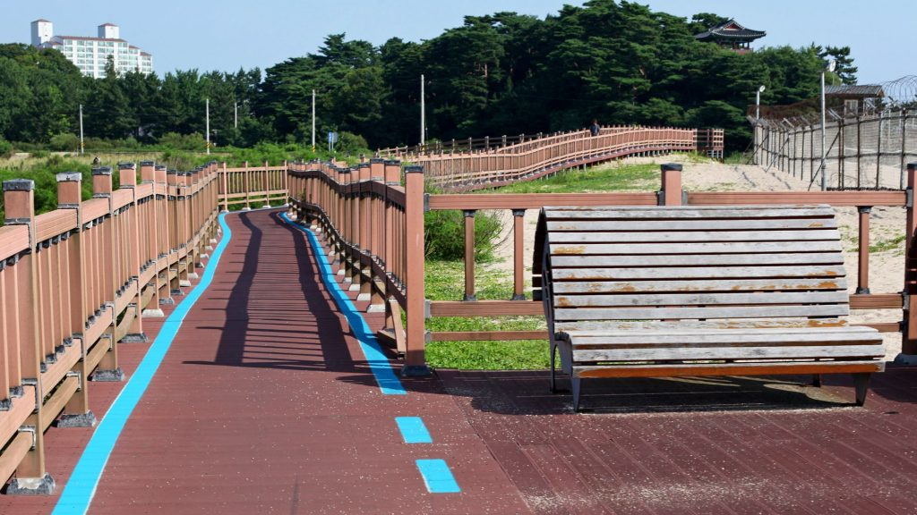 A picture of blue lines along the bike path along the east coast in Korea.