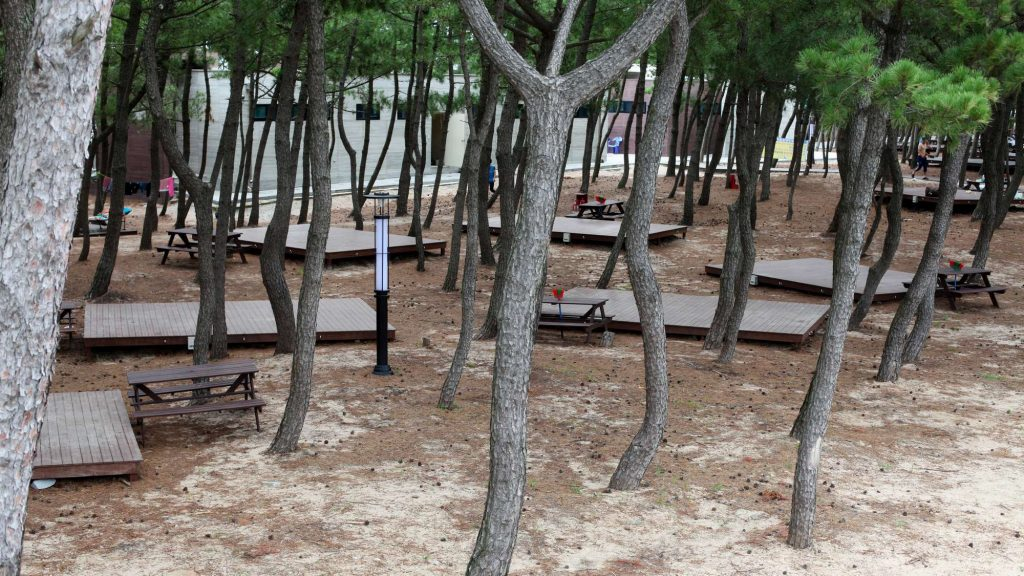 Wooden platforms for campers to pitch their tent in a campground in South Korea.