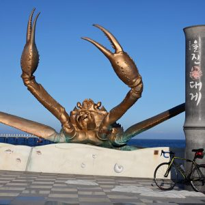 A giant crab statue along the East Coast bicycle paths in Korea.