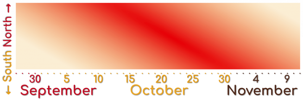 A graph showing when when leaves change their color during the fall season in South Korea.