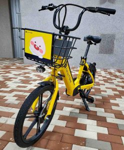 A picture of a Kakao-T bike parked.