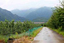 Ocheon Bike Path - Yeonpung Jeungpyeong - Bike Path and Mountains