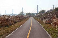 Ocheon Bike Path - Jeungpyeong Sejong - Cable Stay Bridge on Miho Stream