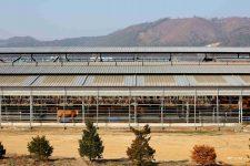 Ocheon Bike Path - Jeungpyeong Sejong - Cattle Barns near Miho Streams