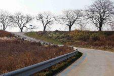 Ocheon Bike Path - Jeungpyeong Sejong - Embankment Bike Path Near Miho Streams