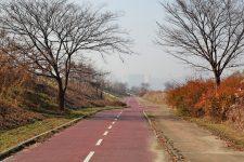 Ocheon Bike Path - Jeungpyeong Sejong - Long Bike Path In Cheongju Park