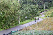Ocheon Bike Path - Yeonpung Jeungpyeong - Bikers Bike Path Farms