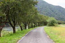Ocheon Bike Path - Yeonpung Jeungpyeong - Dal Stream and Bike Path