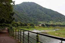 Ocheon Bike Path - Yeonpung Jeungpyeong - Dongjin Stream and Boardwalk