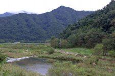 Ocheon Bike Path - Yeonpung Jeungpyeong - Ssang Stream and Mountains