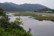 Ocheon Bike Path - Yeonpung Jeungpyeong - Ssang and Dal Streams Converge