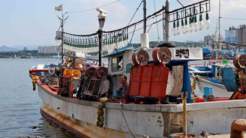 Donghae ⟷ Gangneung Fisherman in Boat