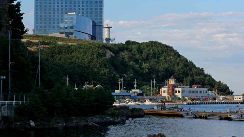 Donghae ⟷ Gangneung Hotel and Seaside Vertical