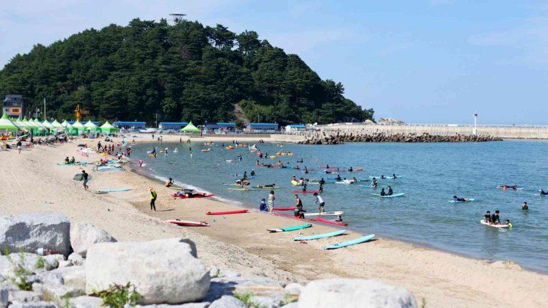 Gangneung ⟷ Sokcho Surfers in Bay