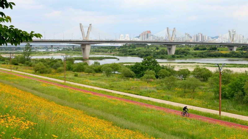Geumgang Bike Path - Daejeon Buyeo - Haknarae Bridge