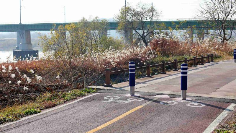 Ocheon Bike Path - Jeungpyeong Sejong - Bike Decals Bridge Miho Stream