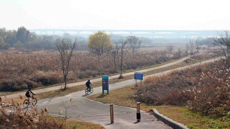 Ocheon Bike Path - Jeungpyeong Sejong - Bike Path and Bikers Overpass Miho Stream