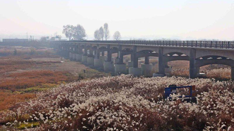 Ocheon Bike Path - Jeungpyeong Sejong - Bridge Over Miho Stream 2