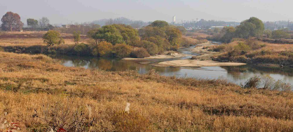 Ocheon Bike Path - Jeungpyeong Sejong - Miho Stream and Sandy Banks
