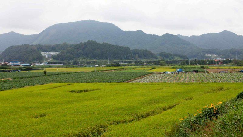 Ocheon Bike Path - Yeonpung Jeungpyeong - Mountains and Farm