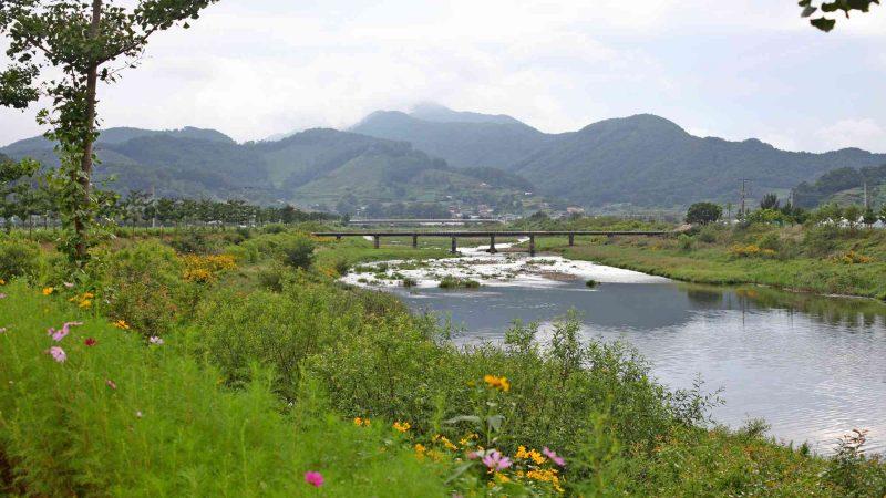Ocheon Bike Path - Yeonpung Jeungpyeong - Seonghwang Stream and Mountains