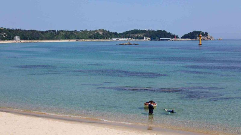 Sokcho ⟷ Daejin Calm Bay Snorkeling