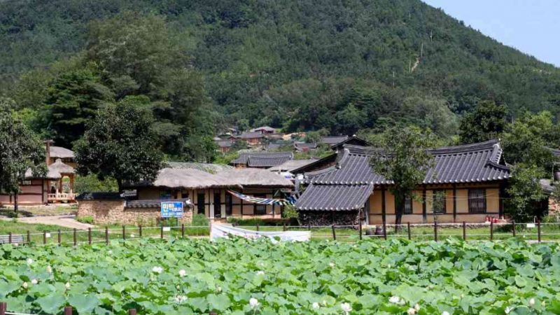 Sokcho ⟷ Daejin Garden Village Hill