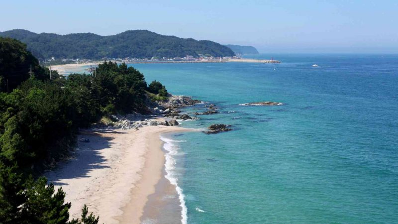 Yeongdeok ⟷ Uljin Beach Overview from Reststop