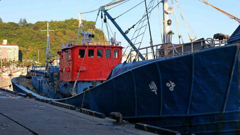 Yeongdeok ⟷ Uljin Fishing Boat 2